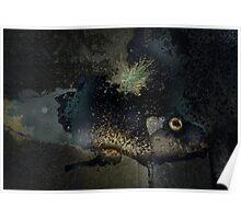 dogfish flashlight light Poster