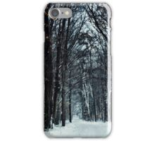 Snowy Road to Grandma's iPhone Case/Skin