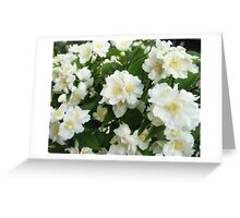 More of that Lovely Fragrance Greeting Card