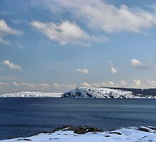 Cape Spear from Cuckold's Cove by JerryCurtis