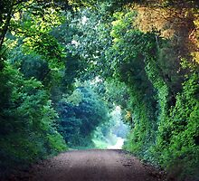 A Green Tunnel by barnsis