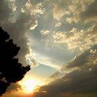 Eternal Hues - California Sunset by Glenn McCarthy