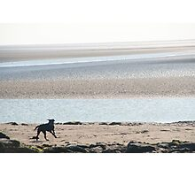 Silverdale Photographic Print
