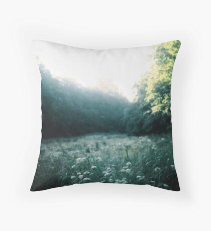 Fortitude. Throw Pillow