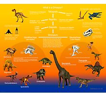 What is a Dinosaur? Photographic Print