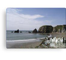 911-Rocky Beach Stampede Canvas Print