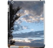 Tranquil Horizons iPad Case/Skin