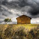 house&tree by Carlos Restrepo