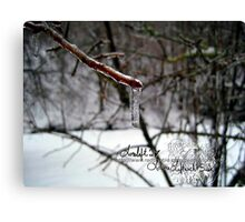 ice and snow storm Canvas Print