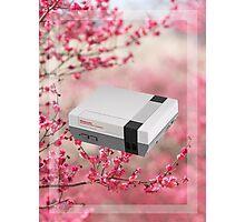 Cherry Blossom NES Photographic Print