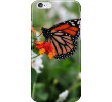 Tang iPhone Case/Skin