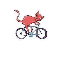 Bike Cat Photographic Print