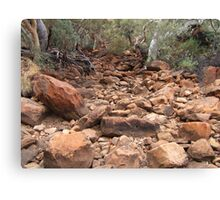 Gums and red rocks Canvas Print