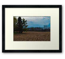 Open Field  Framed Print