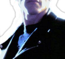 Terminator Arnold Schwarzenegger Sticker