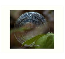 Seeing the World in a Bubble Art Print