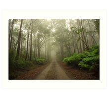 Mysterious Road Art Print