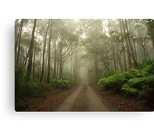 Mysterious Road Canvas Print