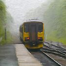 Passenger Train Leaving Hebden Bridge by Glen Allen
