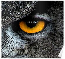 The Great Horned Eye. Poster