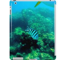 Commonly Seen Tropical Fish iPad Case/Skin