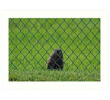 Let me out Mate Art Print