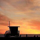California Dreamin' by Ann  Van Breemen