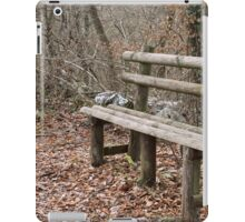 bench in the woods iPad Case/Skin