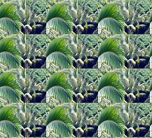 Palm Leafs by tpixx
