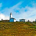 Cape Spear Scenery by Ryan Piercey