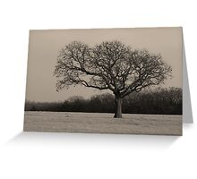 Lonley Tree Greeting Card