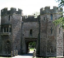 Drawbridge at Bishops Palace by Iani