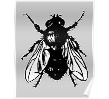 The Fly (bicolor) Poster