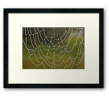 Lines of Pearls Framed Print