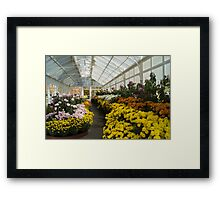Bendigo Conservatory - A Mass of Flowers Framed Print