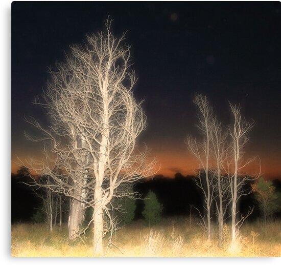 Sleepwalk by transmute