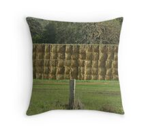 Hay Stacked Throw Pillow