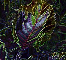 radioactive leaves by Jaclynn Burns