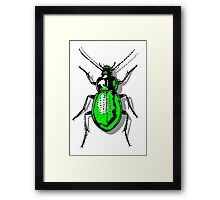 Green Beetle Framed Print