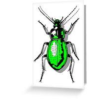 Green Beetle Greeting Card