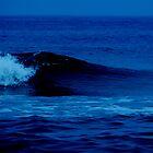 Night Wave by Leslie Wood