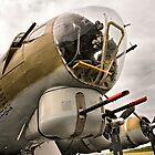 B-17 by Bryan Peterson