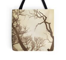 trees of old Tote Bag