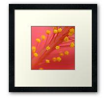 Burst. Framed Print