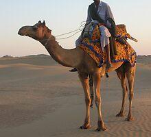 Camel Ride by Liz Watt