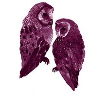 Barn Owl's Love Too by Katelizabethan