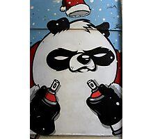 MSA #18 - Bored Panda Photographic Print