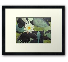 Water Lily at Government House Framed Print