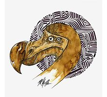 Dodo - coffee and ink - Photographic Print