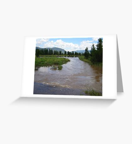 Water where the road should be... Greeting Card